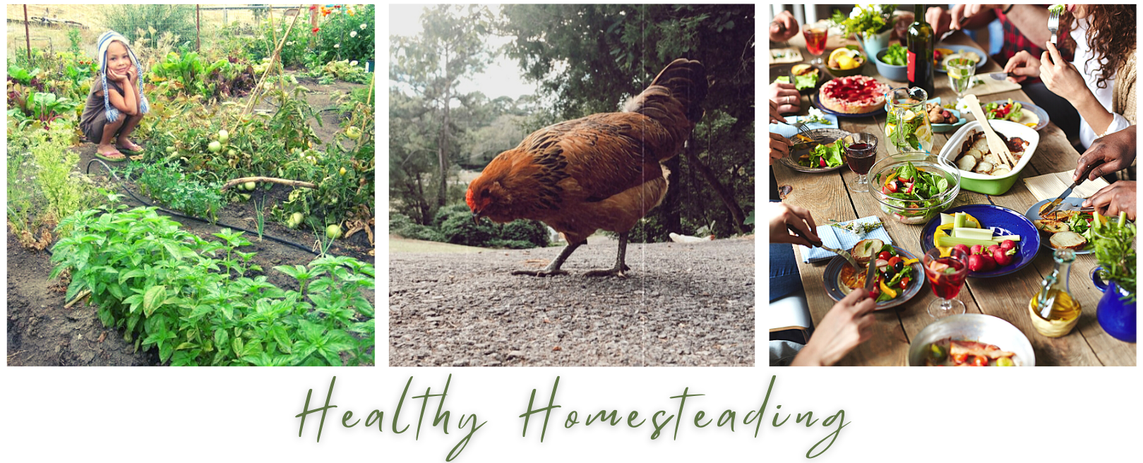 Healthy Homesteading