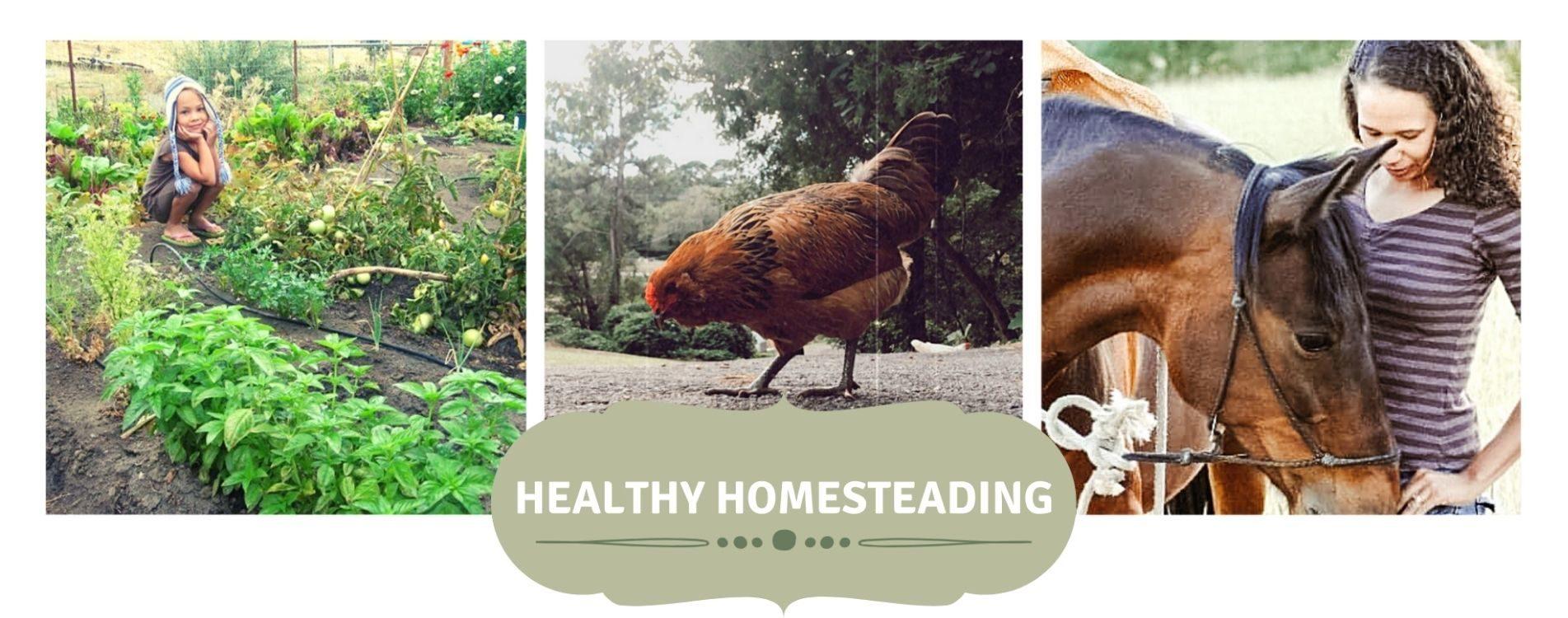 Healthy Homesteading : Essential Oils & Holistic Lifestyle
